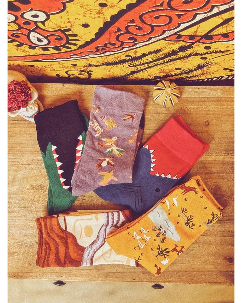 Sosete Life Colors 5 Pack